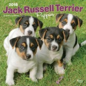 Kalender Jack Russell Terrier Puppies 2018 - BrownTrout - voorblad