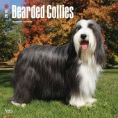 Kalender Bearded Collie 2018 - BrownTrout - voorblad