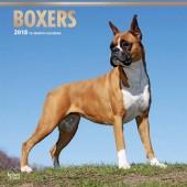Kalender Boxer 2018 (2) - BrownTrout - voorblad