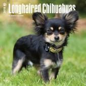 Kalender Chihuahua Langhaar 2018 - BrownTrout - voorblad