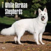 Kalender Zwitserse Witte Herdershond 2018 - BrownTrout - voorblad