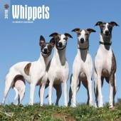 Kalender Whippet 2018 - BrownTrout - voorblad