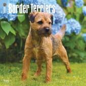 Kalender Border Terrier 2018 - BrownTrout - voorblad