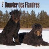 Kalender Bouvier des Flandres 2018 - BrownTrout - voorblad