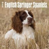 Kalender Engelse Springer Spaniel 2018 (2) - BrownTrout - voorblad