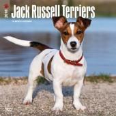 Kalender Jack Russell Terrier 2018 - BrownTrout - voorblad