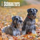 Kalender Schnauzer 2018 - BrownTrout - voorblad