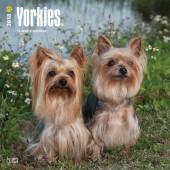 Kalender Yorkshire Terrier 2018 - BrownTrout - voorblad
