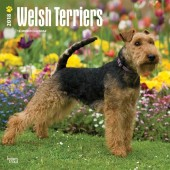 Kalender Welsh Terrier 2018 - BrownTrout - voorblad