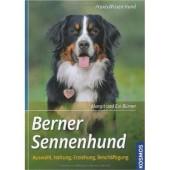 Berner Sennenhund - Margit Burner