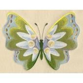 Edelweiss Butterfly EL003