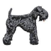 Borduurapplicatie Kerry Blue Terrier EMB002 - rechts kijkend