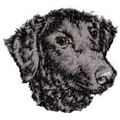 Borduurapplicatie Curly Coated Retriever EMB001 - rechts kijkend