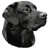 Borduurapplicatie Labrador Retriever EMB022 - rechts kijkend