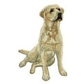 Borduurapplicatie Labrador Retriever EMB025 - rechts kijkend