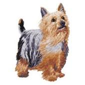Borduurapplicatie Australian Silky Terrier EMB006 - rechts kijkend