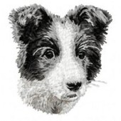 Borduurapplicatie Border Collie EMB008 - variant 1
