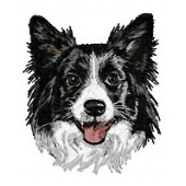 Borduurapplicatie Border Collie EMB013 - variant 1