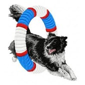 Borduurapplicatie Border Collie EMB014 - variant 1