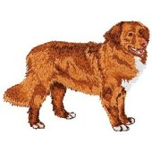 Borduurapplicatie Nova Scotia Duck Tolling Retriever EMB003 - rechts kijkend