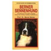 Berner Sennenhund - Bernd Günter