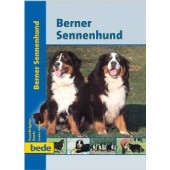 Bernese Mountain Dog - Louise Harper