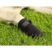 IPTS - Hondenschoentje met klittenband - Maat XXL - zwart