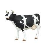 Rundvlees gemalen - Verpakking en prijs per ca 1 kg