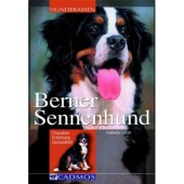 Berner Sennenhund - Isabella Lauer