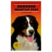 Bernese Mountain Dogs - Lillian Ostermiller