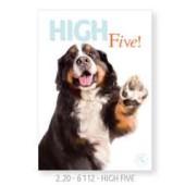 Studio Pets By Myrna - High Five! - Wenskaart 12 * 16 cm