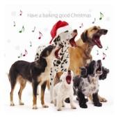 Otterhouse - Barking Good X-mas - Wenskaart 10,8 * 10,8 cm (10 stuks)