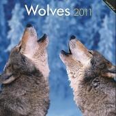 Kalender Wolves 2011