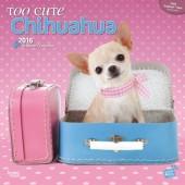 Kalender Chihuahua 2016 - Too Cute Chihuahua