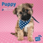 Kalender Puppies 2016 - Puppy Love