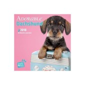 Kalender Adorable Dachshunds 2018 - Studio Pets by Myrna - voorblad