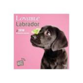 Kalender Lovable Labrador 2018 - Studio Pets by Myrna - voorblad