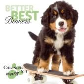 Kalender Berner Sennenhond 2011 - Best Berners