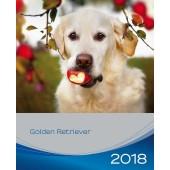 Kalender Golden Retriever 2018 - Trixie - voorblad