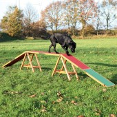 Dog Agility Kattenloop