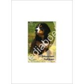 Honden fokken - Esther Verhoef