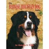 The Bernese Mountain Dog Today - Dr. Malcolm B. Willis